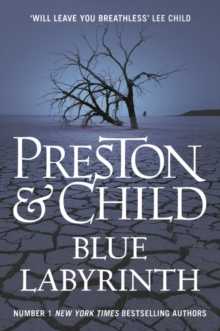 Blue Labyrinth, Hardback Book