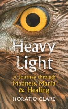 Heavy Light : A Journey Through Madness, Mania and Healing, Hardback Book