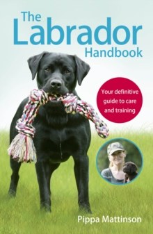 The Labrador Handbook : The definitive guide to training and caring for your Labrador, Paperback Book