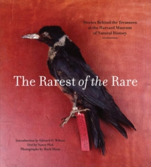 Rarest of the Rare: The Stories Behind the Harvard Museum of Natural History, Paperback / softback Book