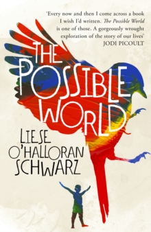 The Possible World, Hardback Book