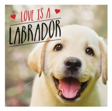 Love is a Labrador : A Lab-Tastic Celebration of the World's Favourite Dog, Hardback Book