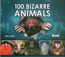 100 Bizarre Animals, Hardback Book