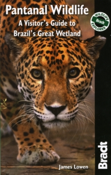 Pantanal Wildlife : A Visitor's Guide to Brazil's Great Wetland, Paperback Book