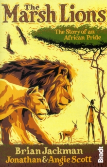The Marsh Lions : The Story of an African Pride, Paperback Book