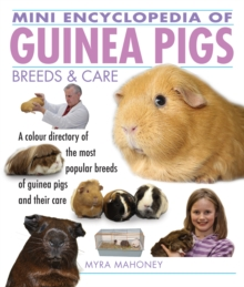 Mini Encyclopedia of Guinea Pigs Breeds and Care