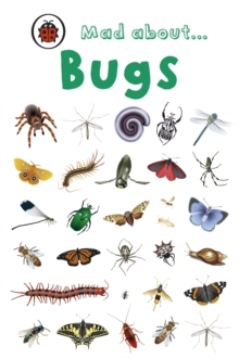 Mad About Bugs, Hardback Book
