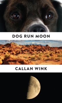 Dog Run Moon : Stories