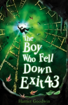 The Boy Who Fell Down Exit 43, Paperback Book