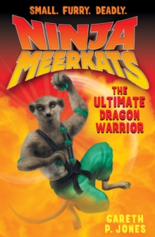 The Ultimate Dragon Warrior, Paperback Book