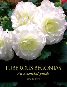 Tuberous Begonias : An Essential Guide, Hardback Book