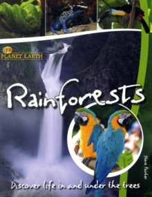 Rainforests : Discover Life in the Trees, Paperback Book