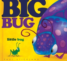 Big Bug, Little Bug, Hardback Book