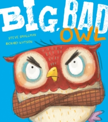 Big, Bad Owl, Paperback Book