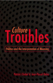 Culture Troubles : Politics and the Interpretation of Meaning