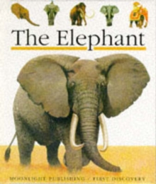 The Elephant, Hardback Book
