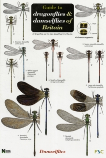 Guide to the Dragonflies and Damselflies of Britain, Sheet map, folded Book