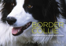 Border Collie, Hardback Book