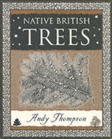 Native British Trees, Paperback Book