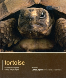 Tortoise - Pet Expert : Understanding and Caring for Your Pet, Paperback Book
