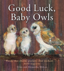 Good Luck Baby Owls, Paperback Book