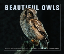 Beautiful Owls : Portraits of Arresting Species from Around the World, Paperback Book