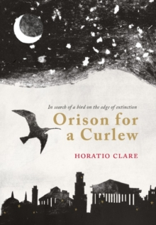 Orison for a Curlew, Hardback Book