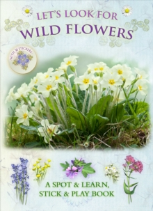 Let's Look for Wild Flowers, Paperback Book