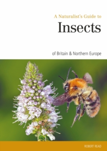 Naturalist's Guide to the Insects of Britain & Northern Ireland, Paperback Book