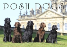 Posh Dogs, Hardback Book