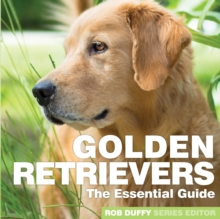 Golden Retrievers : The Essential Guide, Paperback / softback Book