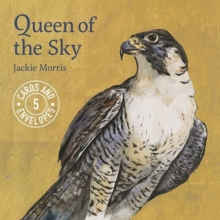 Jackie Morris Queen of the Sky, Postcard book or pack Book