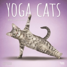 Yoga Cats 2020 Square Wall Calendar, Calendar Book