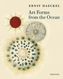 Art Forms from the Ocean: the Radiolarian Prints of Ernst Haeckel, Paperback / softback Book